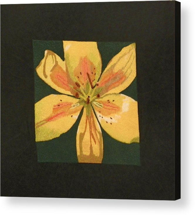 Nature Acrylic Print featuring the mixed media Asiatic Lily by Jenny Williams