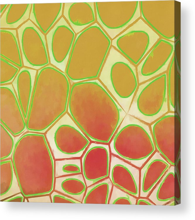 Painting Acrylic Print featuring the painting Cells Abstract Five by Edward Fielding