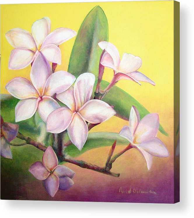 Floral Painting Acrylic Print featuring the painting Frangipanier by Muriel Dolemieux