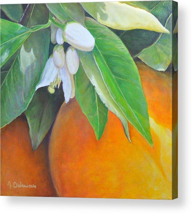 Acrylic Painting Acrylic Print featuring the painting Oranges et Fleurs by Muriel Dolemieux