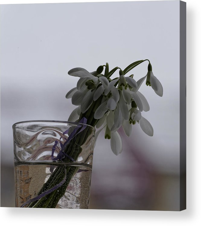 Arrangement Acrylic Print featuring the photograph Snowdrops Bouquet In The Glass by Adrian Bud