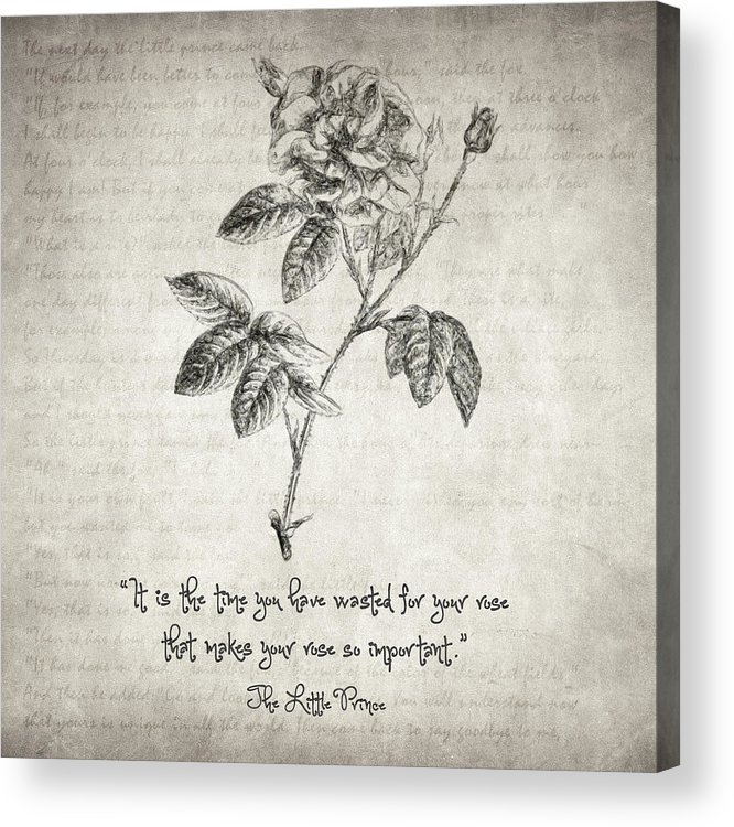 The Little Prince Rose Quote Acrylic Print By Zapista Ou