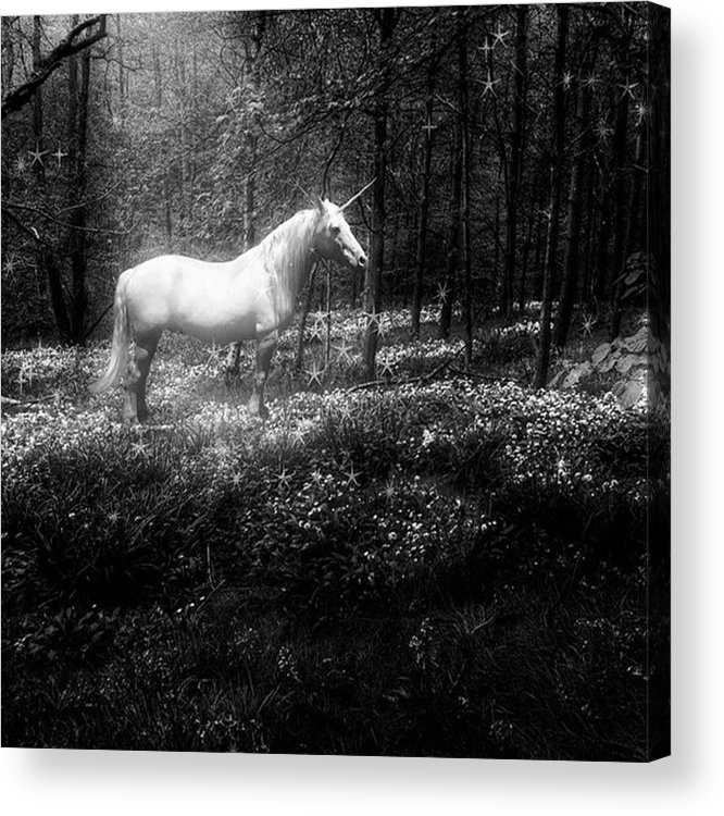 Moonlight Acrylic Print featuring the photograph Under A Moonlit Sky  #fantasy #unicorn by John Edwards
