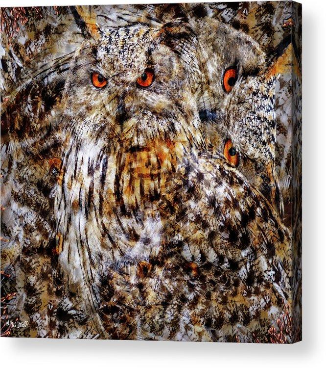 Western Siberian Eagle Owl Acrylic Print featuring the digital art Western Siberian Eagle Owl by Alius Imago