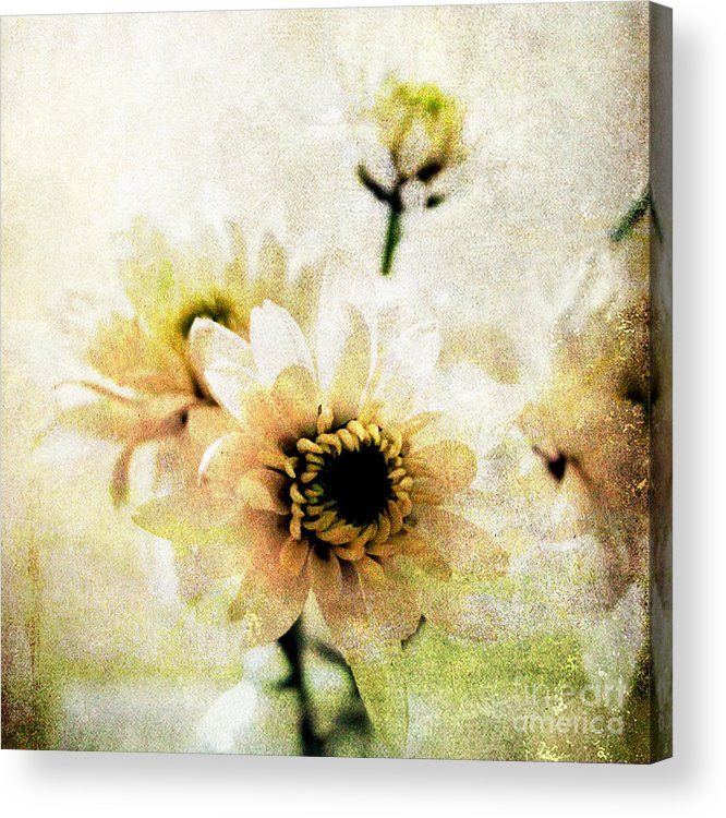 Flowers Acrylic Print featuring the mixed media White Flowers by Linda Woods