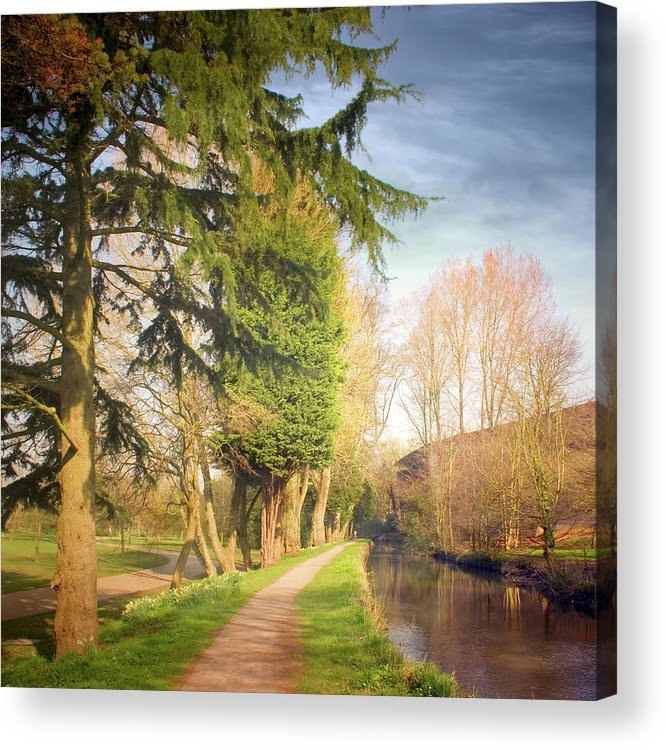 Tranquility Acrylic Print featuring the photograph Path Besides Canal In Bute Park by Christiana Stawski