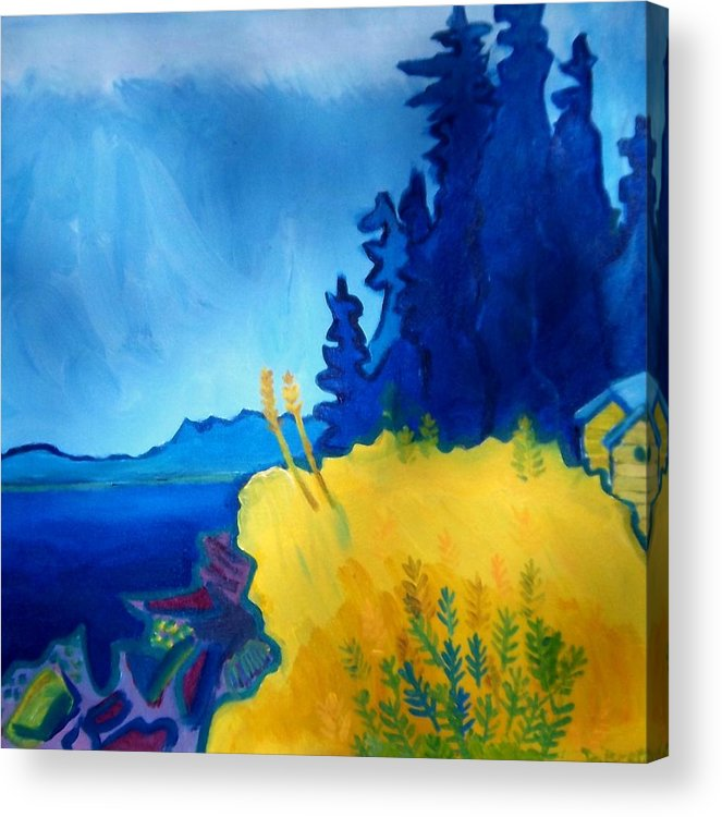 Seascape Acrylic Print featuring the painting Pemaquid Point by Debra Bretton Robinson