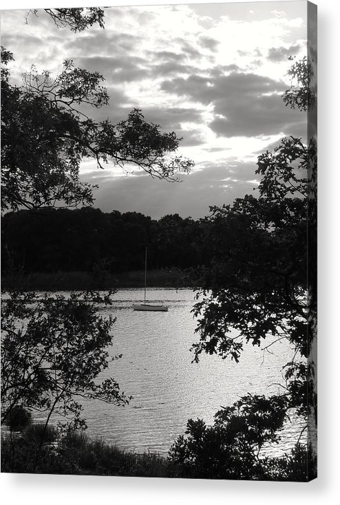 Black&white Acrylic Print featuring the photograph At The Edge Of Still-life by Karen Bibbo-Lord