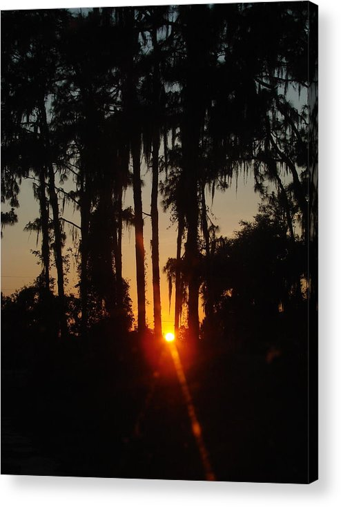 Sunset Acrylic Print featuring the photograph Sunset In The Woods by Kimberly Camacho