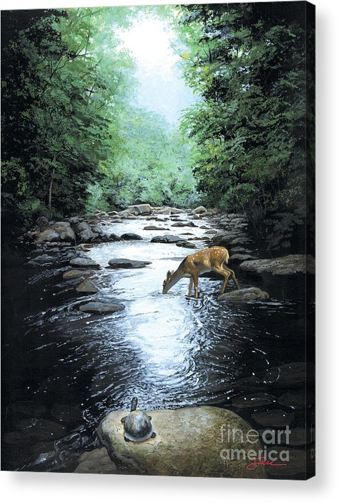 #wildlife Acrylic Print featuring the painting The Watercooler by Harold Shull