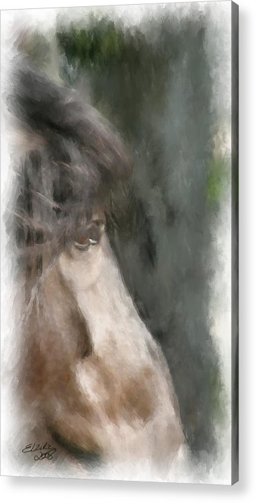 Horse Acrylic Print featuring the painting Misty Morn by Elzire S