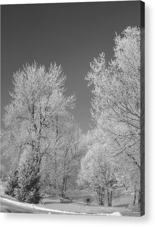 Snow Acrylic Print featuring the photograph 020810-72 by Mike Davis