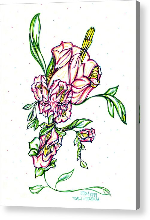 The Garden Of Eden Collection Acrylic Print featuring the drawing Dancing Flowers by Judith Herbert