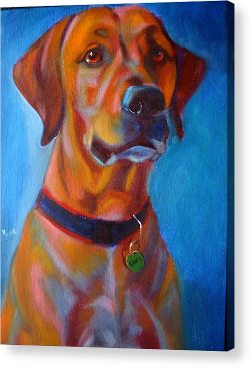 Dog Portraits Acrylic Print featuring the painting Miss Lucy by Kaytee Esser