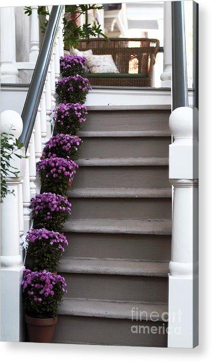 Purple Plants Acrylic Print featuring the photograph Purple Plants by John Rizzuto