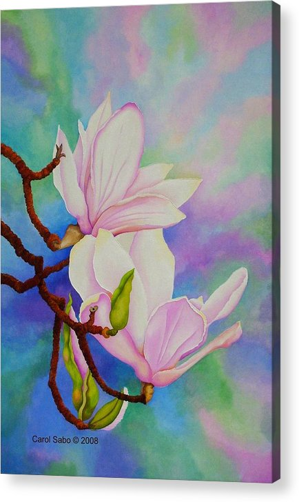 Pastels Acrylic Print featuring the painting Spring Magnolia by Carol Sabo