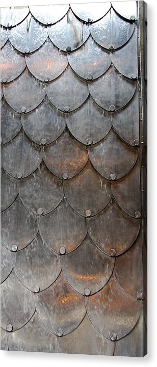 Shapes Acrylic Print featuring the photograph Fish Scales by Kenna Westerman