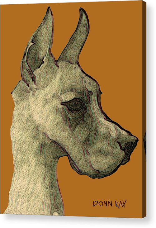Great Dane Acrylic Print featuring the mixed media Great Dane by Donn Kay