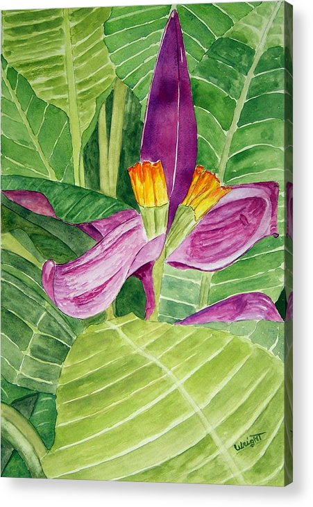 Flower Art Acrylic Print featuring the painting Bananas In October by Larry Wright