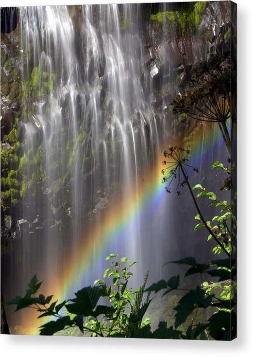 Waterfall Acrylic Print featuring the photograph Rainbow Falls by Marty Koch