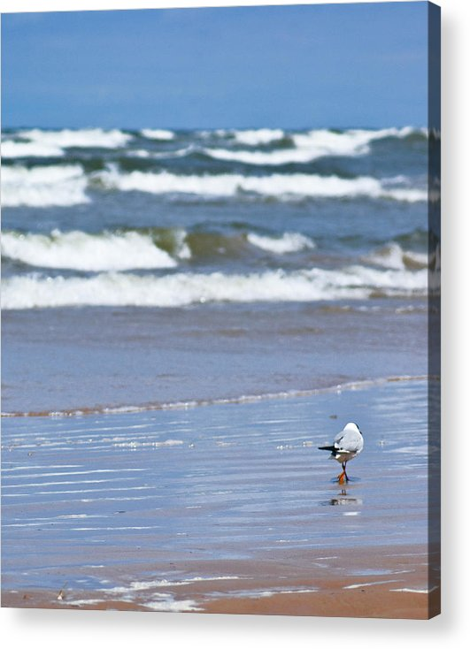 The Sea Acrylic Print featuring the photograph Walking On The Water by Vadim Grabbe