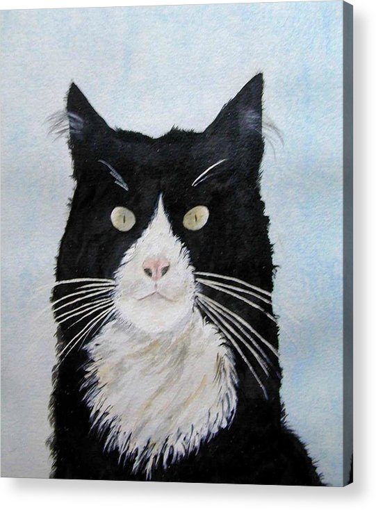 Sometimes They Look At You And You Just Know They Know It All All Along Acrylic Print featuring the painting Curiosity by Wilfred McOstrich