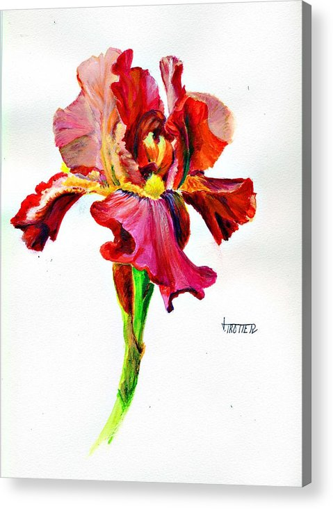 Floral Acrylic Print featuring the painting Iris by Jimmie Trotter