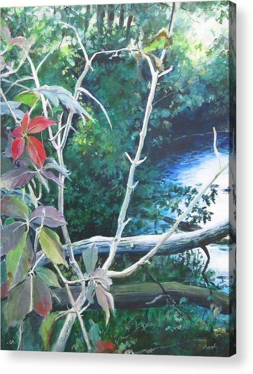 Landscape .stream Acrylic Print featuring the painting September Moment by William Brody