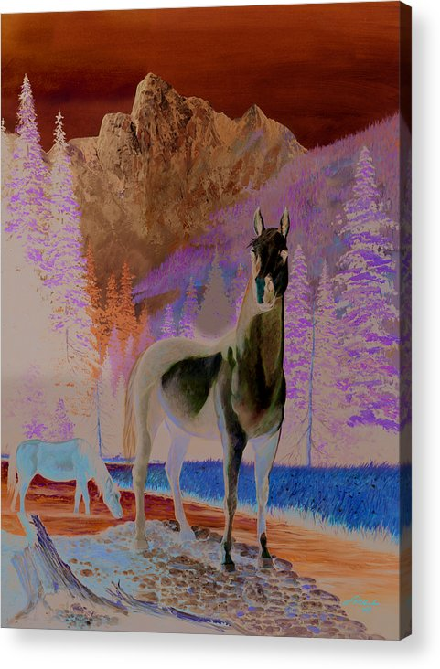 Horse Acrylic Print featuring the painting The Sentinel by Harold Shull