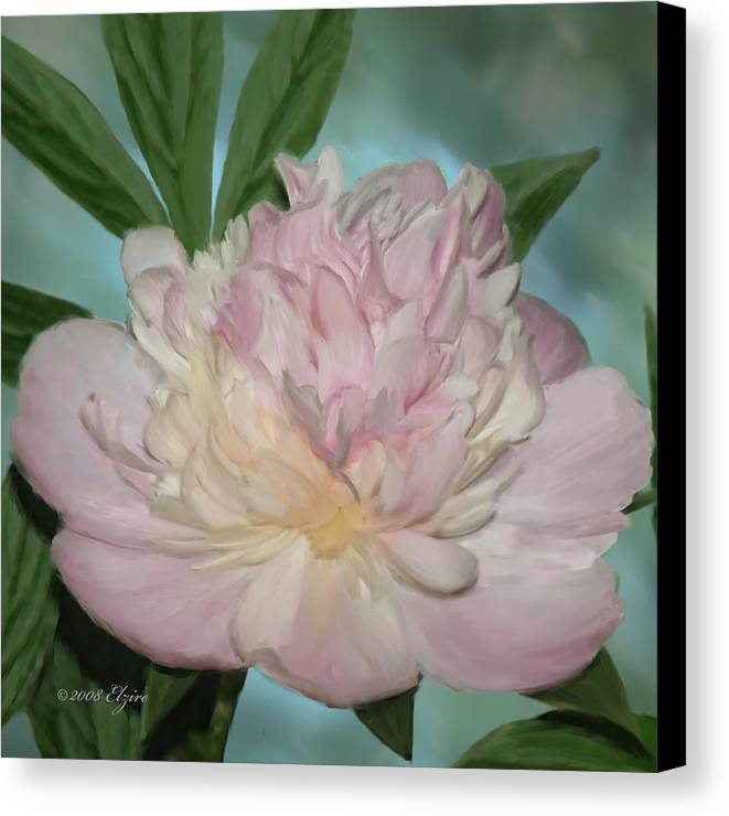 Pink Peony Canvas Print featuring the painting Pink Peony by Elzire S
