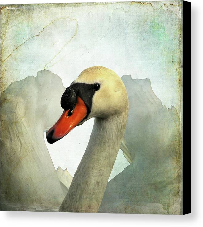 Swan Canvas Print featuring the digital art Swan by Walter Carlson