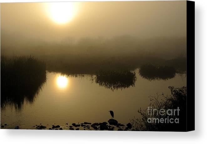 Marsh Canvas Print featuring the photograph Misty Morning In The Marsh by Nancy Greenland