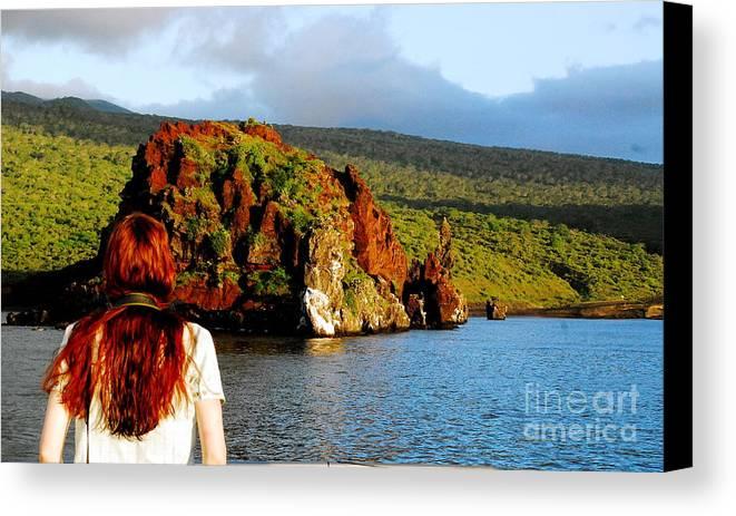 Ecuador Canvas Print featuring the photograph Oh There You Are by Fabian Romero Davila