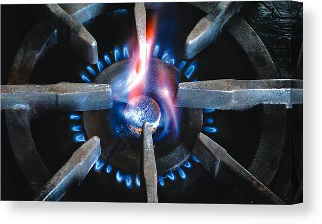 Wolf Canvas Print featuring the photograph Wolf Burner2 by Tom Kostro
