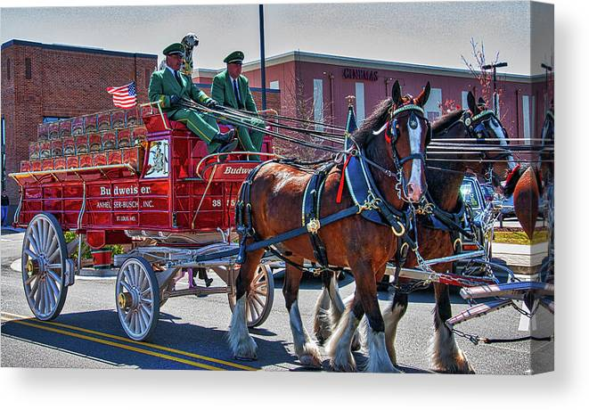 Clydesdales. Horses Canvas Print featuring the photograph Here Comes The King-budweiser Clydesdales by Neil Doren