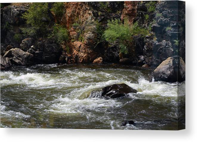 River Canvas Print featuring the photograph Poudre River 2 by Linda Benoit