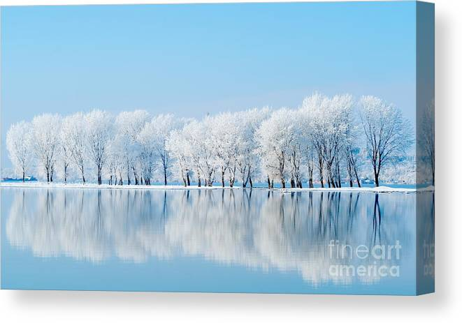 Magic Canvas Print featuring the photograph Winter Landscape by Aaltair