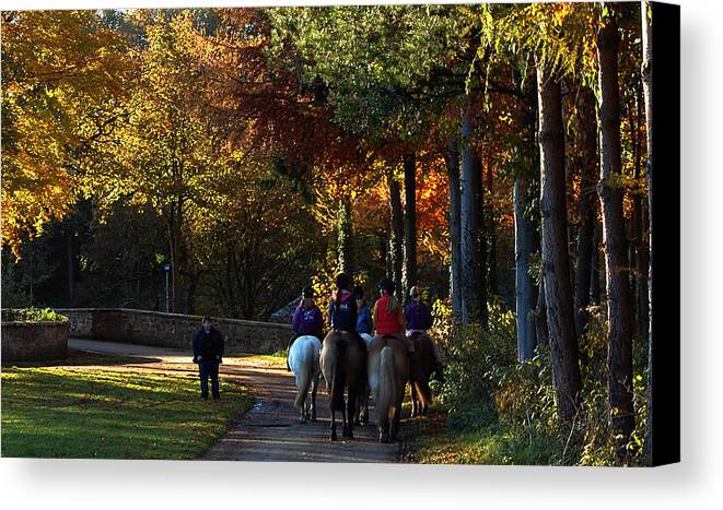 Horses Canvas Print featuring the photograph Autumn Jaunt by John Bailey
