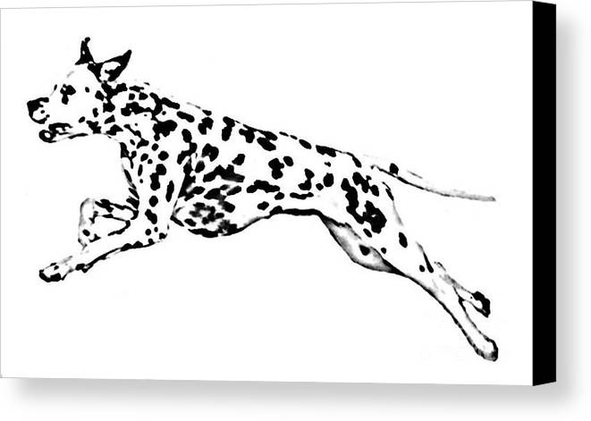 Dogs Canvas Print featuring the drawing Celebrate by Jacki McGovern