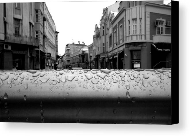 Rain Canvas Print featuring the photograph Raindrops by Lucy D