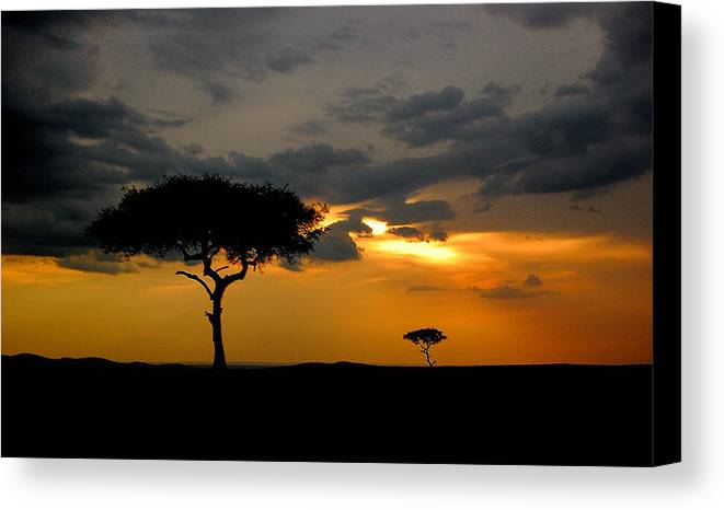 Plains Canvas Print featuring the photograph Rains In Africa by Jim Southwell
