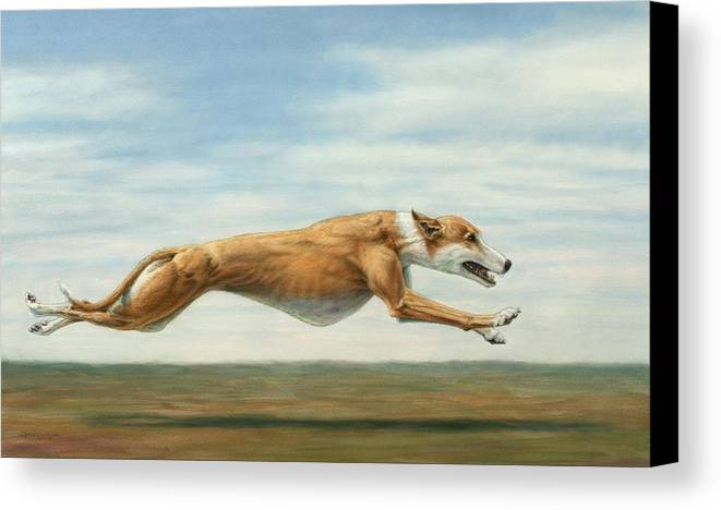 Greyhound Canvas Print featuring the painting Running Free by James W Johnson