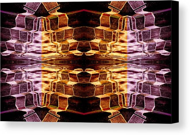 Mirror Image Canvas Print featuring the photograph The Steps You Now Deny Followed You Here 2014 by James Warren