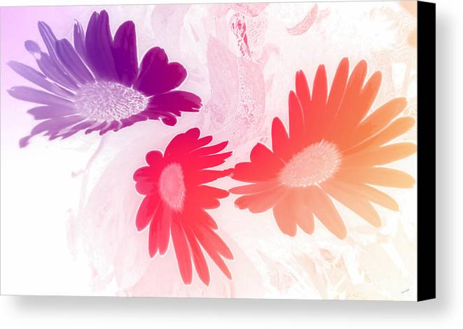 Flower Canvas Print featuring the digital art Daised by Linda Galok
