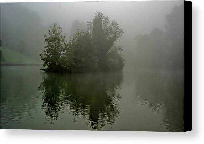 Tree Canvas Print featuring the photograph Fog In The Park- Warminster by Krzysztof Dac