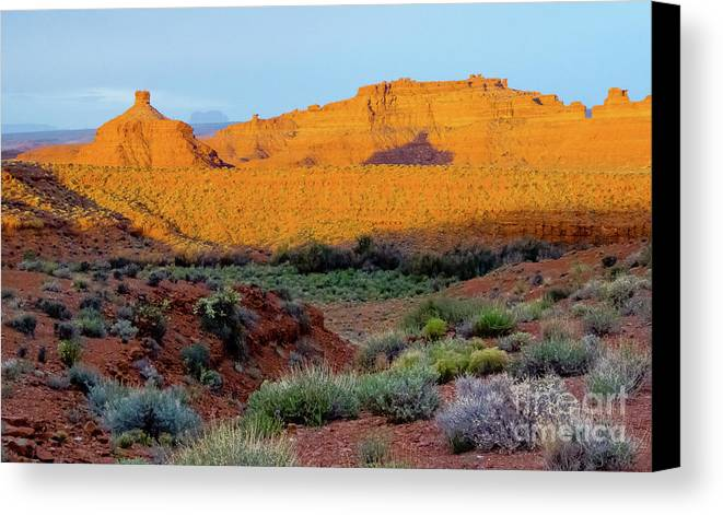 Valley Of The Gods Canvas Print featuring the photograph Greenery by Jerry Sellers