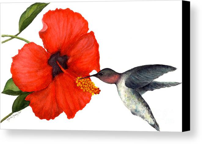 Hummingbird Canvas Print featuring the painting Hummingbird by Marsha Young