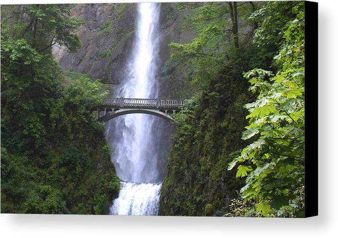 Waterfall Canvas Print featuring the photograph Multnomah Falls Wf1051a by Mary Gaines