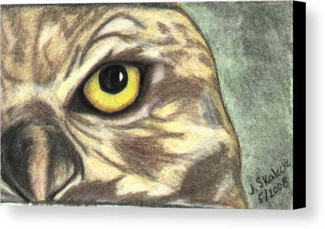 Owl Canvas Print featuring the drawing Watchful Eye by Jennifer Skalecke