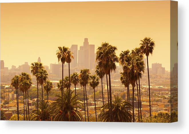 Los Angeles With Palm Trees In Canvas Print Canvas Art